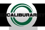 excaliburarm_logo